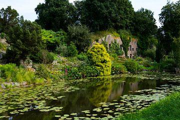 Botanische Gärten in Utrecht von Nathalie Doesburg
