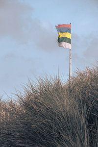 Terschelling's flag van