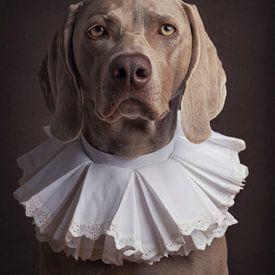 Portrait classique de chien avec collier sur Raoul Baart