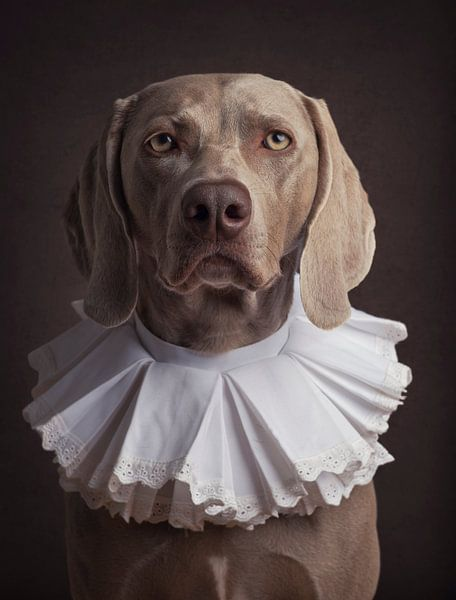 Klassiek hondenportret met kraag van Raoul Baart
