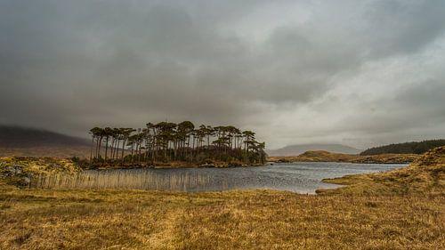 Lonely island van Richard Reuser