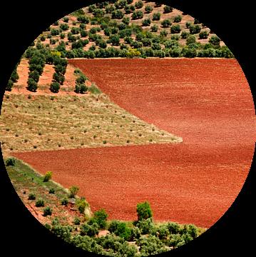 Rode aarde / Red earth van Harrie Muis