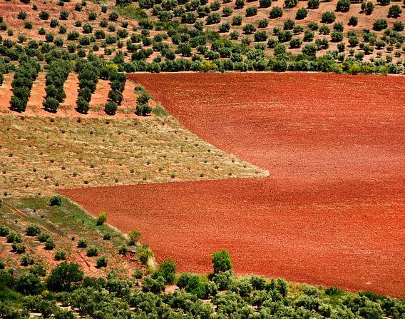 Rode aarde / Red earth