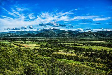 Landschap van Michelle van den Boom