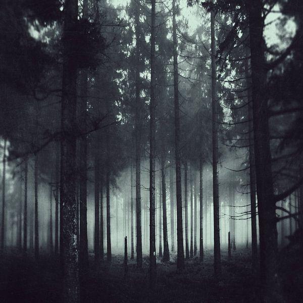 Darkness and Light van Dirk Wüstenhagen