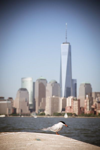 Freedom Tower, New York van Capture the Light