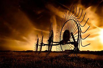 Hooi harken in het veld van