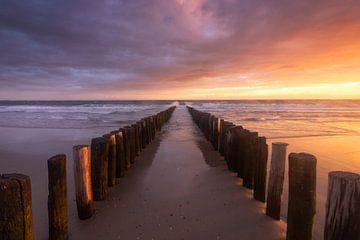 Touched by the Light van Arnoud van de Weerd