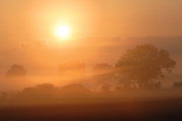 Zauberland... Sonnenaufgang *im Nebel* von wunderbare Erde