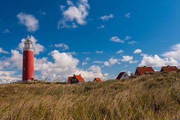 De Vuurtoren op Texel van Brian Morgan