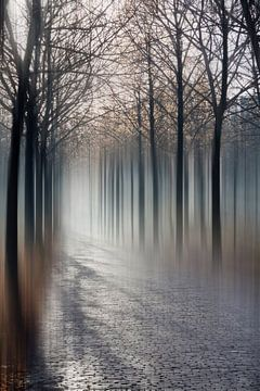 Een abstracte afbeelding van een pad naar een onbekende bestemming. van Hille Bouma