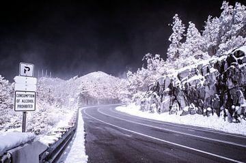 De weg naar Mount Lemmon van Chiel Lammers