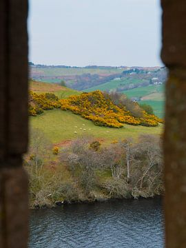 Schottische Landschaft von einer Burg aus gesehen von Koen Leerink