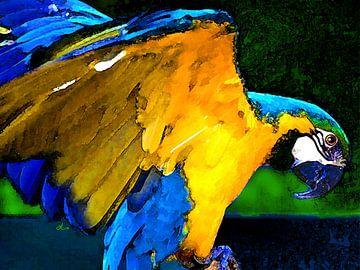 Stolzer Papagei von Dirk H. Wendt
