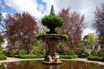 Jardim Botanico, Fontein, Coimbra, Beira Litoral, Regio Centro, Portugal van Torsten Krüger