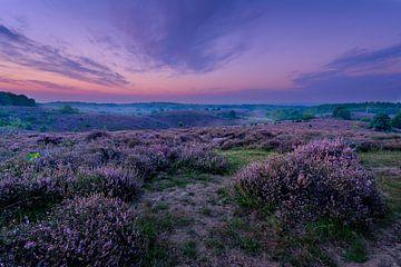 Posbank Veluwezoom Sonnenaufgang von Martijn van der Nat