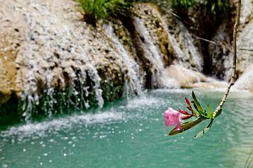 Polilimnio Watervallen van Inge Wiedijk