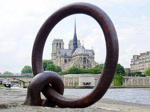 Notre-Dame door een ringetje