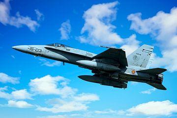 F/A-18 Hornet van Gert Hilbink