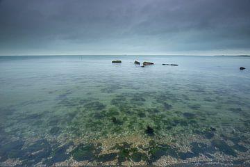 Les basses eaux de l'Escaut oriental sur Marcel Klootwijk