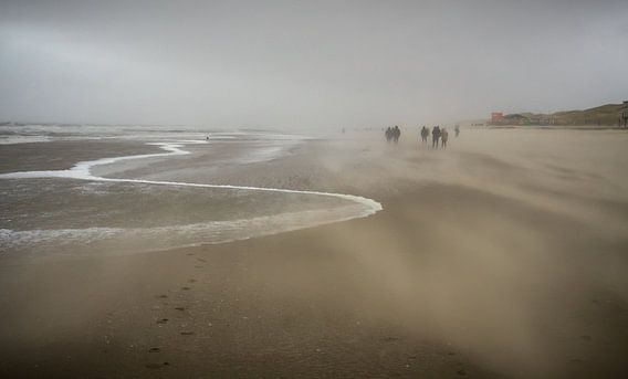 Zanderige kust bij Callantsoog