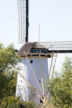 Moulin à vent néerlandais à Schiedam aux Pays-Bas pendant l'été. sur N. Rotteveel