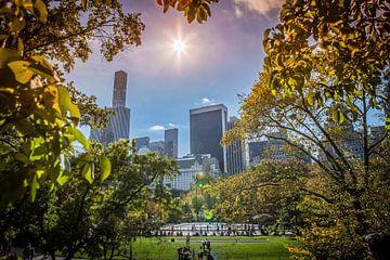 Central Park, New York sur Maarten Egas Reparaz