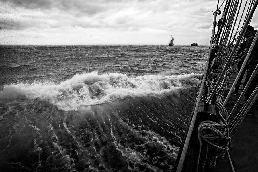 Stormachtig van Leen Van den Abeele