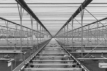 Abstracte foto met lijnen in zwart-wit von Rinus Lasschuyt Fotografie