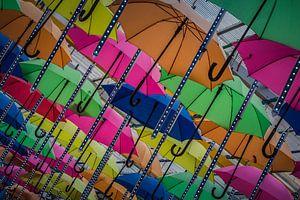 Paraplu van