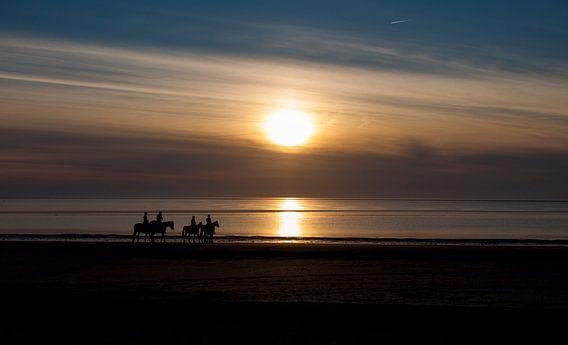 paardjes op het strand