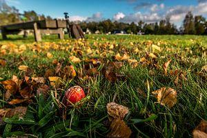 Autumn in Groningen