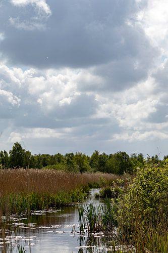 Wolken landschap