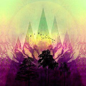 TREES under MAGIC MOUNTAINS V