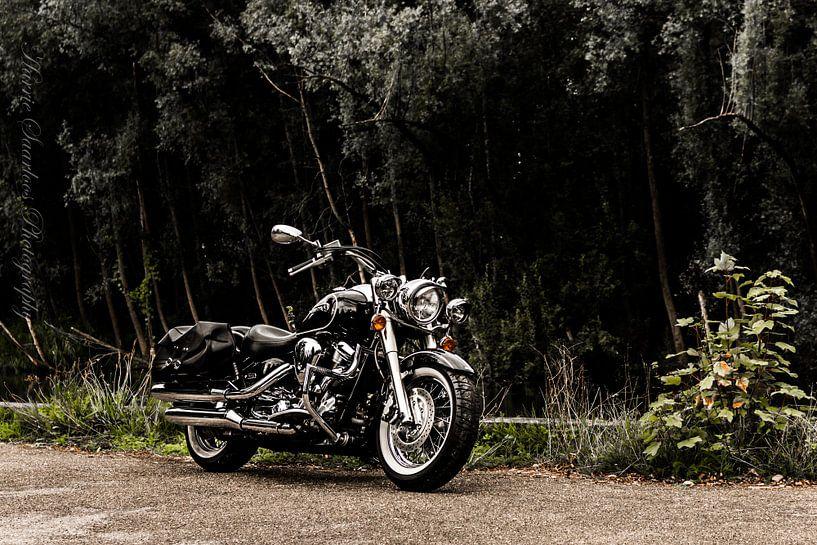 Yamaha XV 1600 Wildstar von Westland Op Wielen