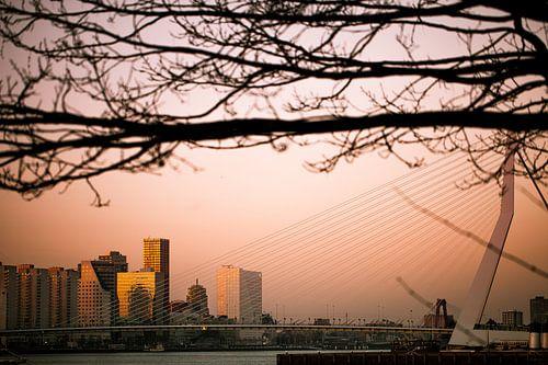 Zonsondergang vanaf Katendrecht von Pieter Wolthoorn