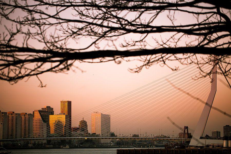 Zonsondergang vanaf Katendrecht van Pieter Wolthoorn