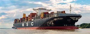 Containerriese auf der Elbe von Sabine Wagner
