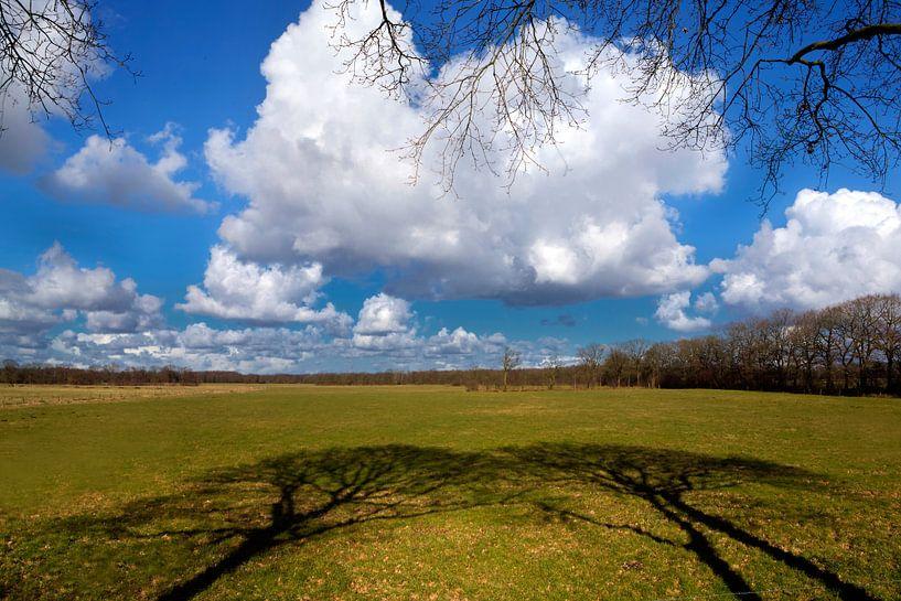 Bewolkt landschap met blauwe lucht van Fokje Otter