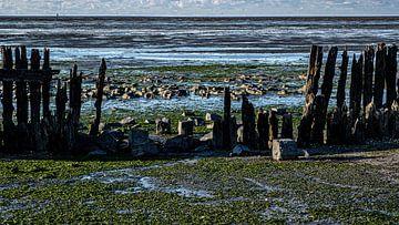 Het wad bij Moddergat van Eddy Westdijk