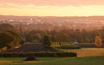 Maastricht in de ochtendmist (landschapsfotografie) van