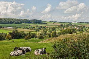 Uitzicht op Epen in Zuid-Limburg