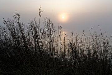 Mist bij zonsondergang op het meer van Rolf Pötsch