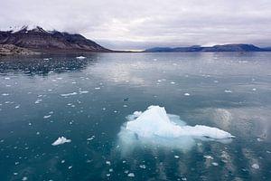 Ijs op de Noordpool van Richard van der Hoek