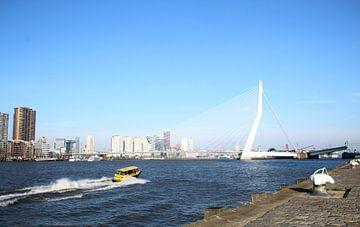 Rotterdam van Femke Krone