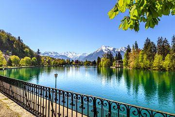 Berner Alpen van Bojan Radisavljevic