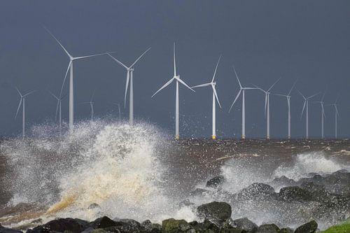 Windpark Westermeerwind van