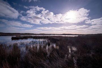 Moeras in Texel - duinen in de zon van John Ozguc
