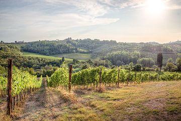 Toskanische Weinberge von Jelmer Laernoes