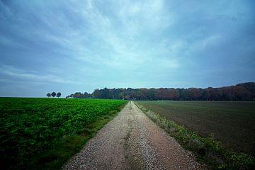 Platteland in Nederland van E Blaas